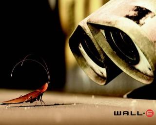 WALL E  27