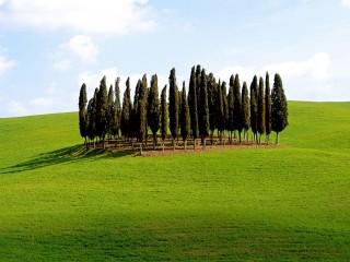 Scenic Siena Province  Tuscany  Italy