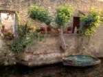 Canals of L3Isle sur la Sorgue7 France