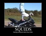 squidsinsurance