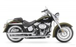 Harley  41