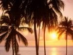 East Coast of Zanzibar  Tanzania