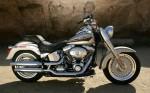 Harley  33