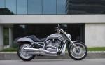 Harley  18