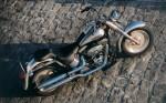 Harley  16