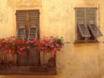 Golden Afternoon5 Provence5 France