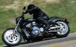 Harley  23