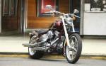 Harley  80