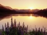 Turnagain Arm  Chugach State Park  Alaska