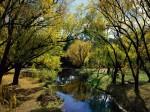 Morse s Creek  Bright  Victoria  Australia