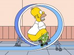 The Simpsons  102