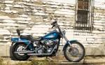 Harley  17