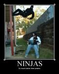 ninjakp7