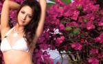 Leah Dizon 1920X1200 30338 Sexy Wallpaper