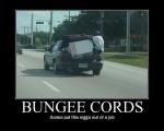 bungeecords1mi2