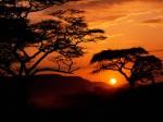 Serengeti National Park Sunset  Tanzania