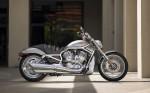 Harley  11