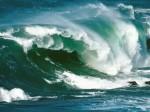 North Island Waves New Zealand